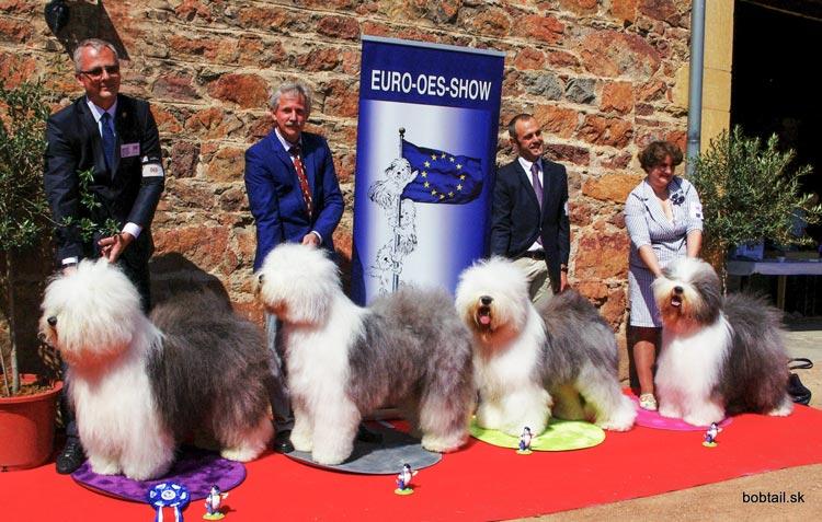 EURO OES SHOW Špeciálna európska výstava bobtailov 2014 Francúzsko Parigny 1. miesto v otvorenej triede